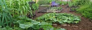 Calendrier Lunaire Potager : calendrier lunaire 2019 pour le jardin et le potager ~ Melissatoandfro.com Idées de Décoration