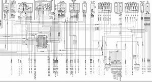 996  2004  Xenon Headlight Wiring Diagram