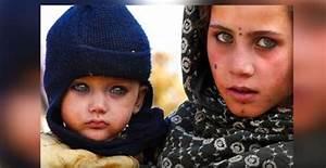 Yeux Verts Rares : 10 personnes avec les plus beaux yeux du monde voir ~ Nature-et-papiers.com Idées de Décoration