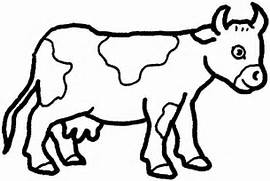 cow preschool coloring pages free printable coloring pages