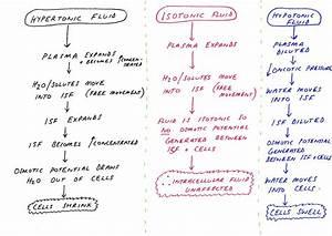 Basic Cellular Physiology  Fluid Compartments