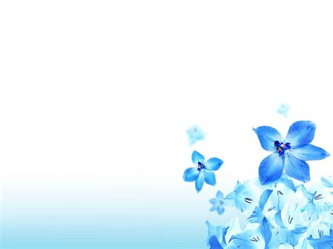 christian flower  background  backgrounds templates