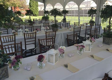 chair ceremony seating dining wedding chairs rental