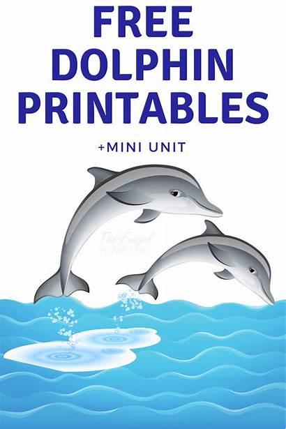 Dolphin Dolphins Printable Printables Unit Clip Mini