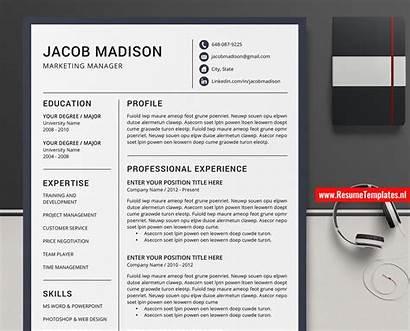 Resume Cv Template Vitae Curriculum Word Professional