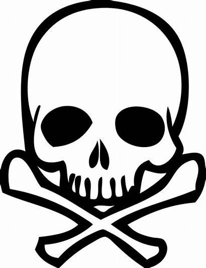Skull Outline Transparent Pngio