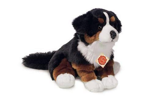 teddy hermann plueschfigur berner sennenhund sitzend