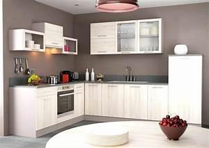 Meuble Cuisine Lapeyre : montage meuble bas cuisine lapeyre design de cuisine ~ Farleysfitness.com Idées de Décoration