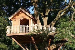 Constructeur Cabane Dans Les Arbres : la cabane escalier autour de l 39 arbre nidperch constructeur de cabane ~ Dallasstarsshop.com Idées de Décoration