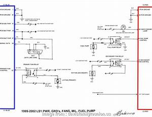 Jegs Mini Starter Wiring Diagram Brilliant Fuel Pump