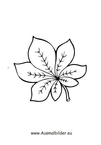 ausmalbilder kastanienblatt herbst malvorlagen