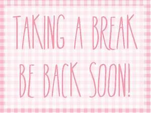 Blog Break - Elisabeth Klein