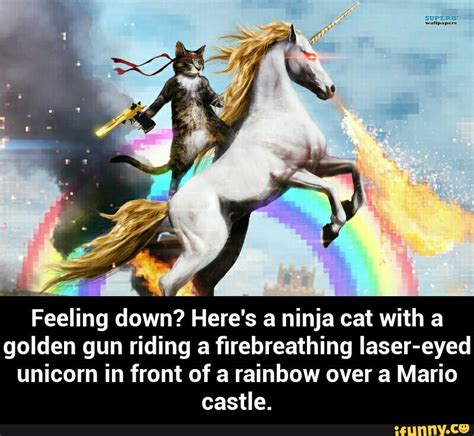 Unicorn Rainbow Meme - ninja cat unicorn meme cute cats