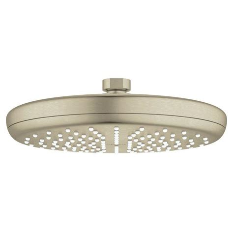 Grohe Shower Heads by Grohe Tempesta Brushed Nickel 1 Spray Shower At