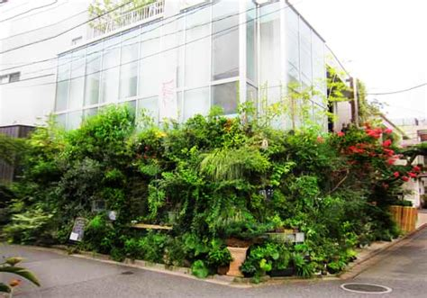 enchanting green wall is really a flora filled bar in