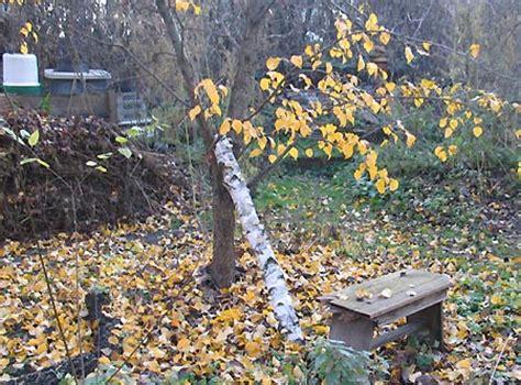 Der Garten Ista by Komposthaufen Im Jahreslauf