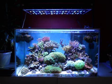 fabriquer eclairage led aquarium fabriquer une re led pour aquarium recifal 201 clairage de la cuisine