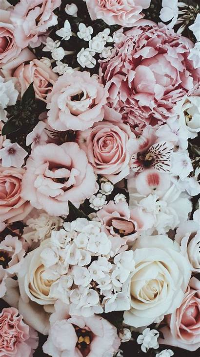 Rose Gold Iphone Flower Wallpapers Huawei Xs