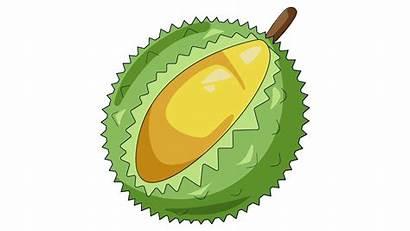 Buah Durian Gambar Kartun Clipart Buahaz Koleksi