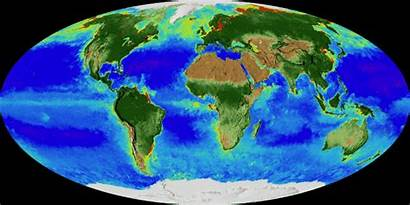 Nasa Earth Biosphere Pulse Lapse Map Globe