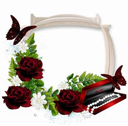 Transparent Frame Dark Roses Frames Flower Clipart