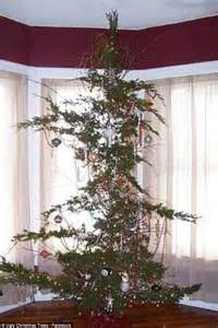 awful christmas trees are pine ful to look at daily mail online
