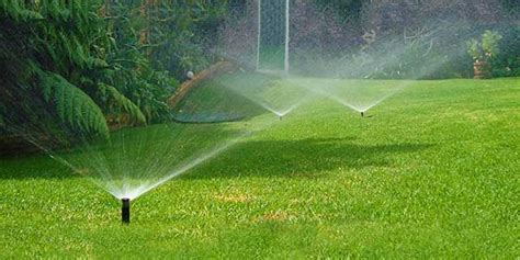 difusores de agua  riego del jardin encuentra la