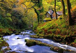 House near Forest Stream Full HD Wallpaper and Background ...
