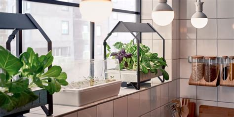 Ikea Released A Hydroponic Gardening Collection-business