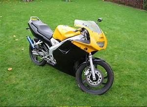 2003 Yamaha Tzr 50 Photos  Informations  Articles