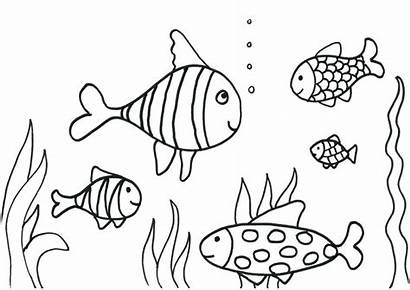 Coloring Fish Pages Exotic Tropical Printable Adults