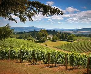 North Willamette Valley winery tour - Travel Portland