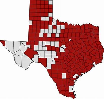 Texas Coronavirus Map Pandemic Latest Svg Houston