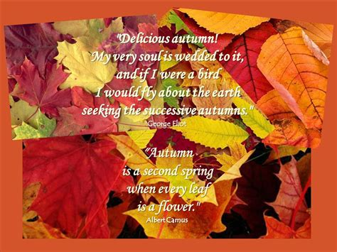 Autumn Quotes  Autumn Posters Picture