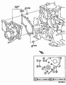 Toyota Corolla Engine Water Pump Housing  Pump  Water