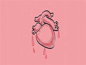 Heart Human Body Drawing images