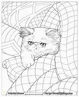 Coloring Pages Haven Whisker Quilt Jason Books Bluecat Hamilton Adult Quilts Cats Divyajanani раскраски источник Vk sketch template