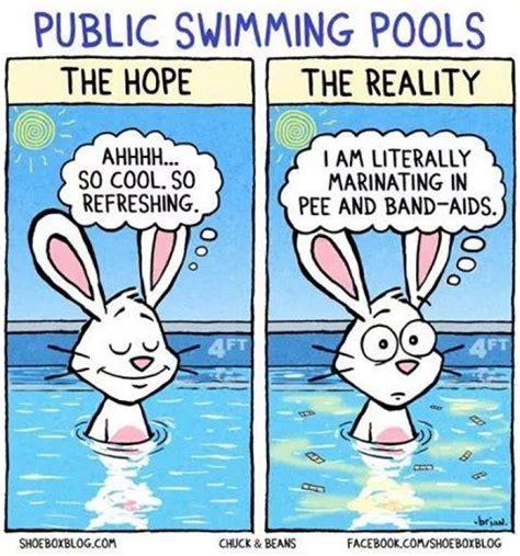 Swimming Pool Meme - cartoon swim quotes quotesgram