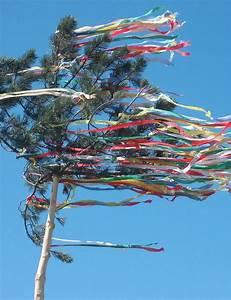 4 Jahreszeiten Hecke : die besten 25 maibaum ideen auf pinterest ~ Lizthompson.info Haus und Dekorationen