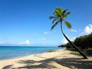 Sprat Hall Beach (St. Croix) - Top Tips Before You Go ...