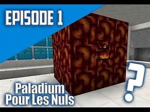 Paladium Pour Les Nuls