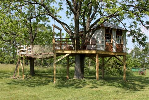luxury cool tree house designs  forces    wow