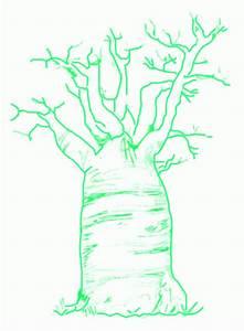 Baobab Tree Drawing At Getdrawings