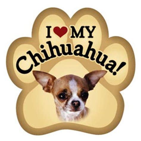 Best I Love My Chihuahua Photos 2017 ? Blue Maize