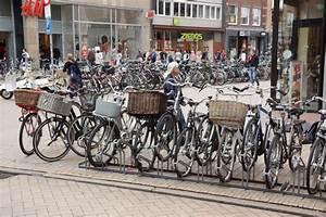 Fahrrad Satteltaschen Test : fahrrad kaufen welches fahrrad passt zu mir ~ Kayakingforconservation.com Haus und Dekorationen