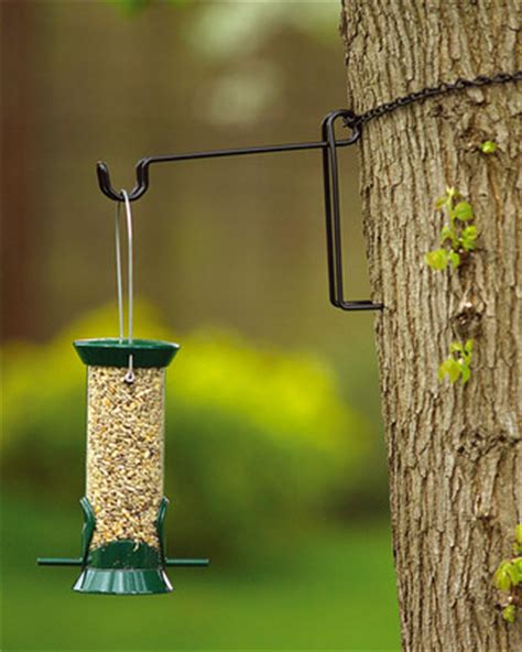 buy hang right online from living with birds