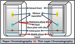 Difference Between Paper And Thin Layer Chromatography