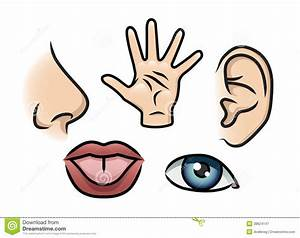 The Five Senses Royalty Free Stock Photography