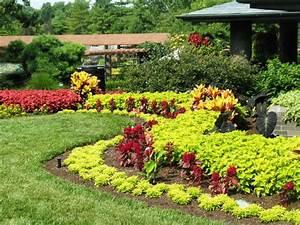Lawn landscape garden design for Garden plant design