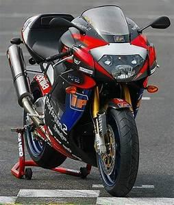 Trofeo Honda Ns 125 R 3987 125 2 Strokes Honda Motorcycle Y